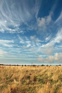 surfgatinho's summer sky (Flickr)
